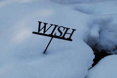 Wish_1_08